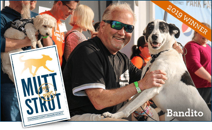 Mutt Strut 2019 Winner with his dog Bandito